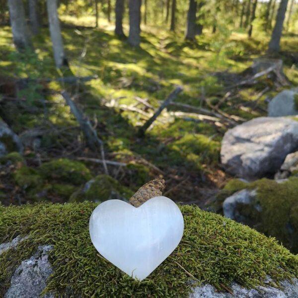 hjärta selenit dekoration