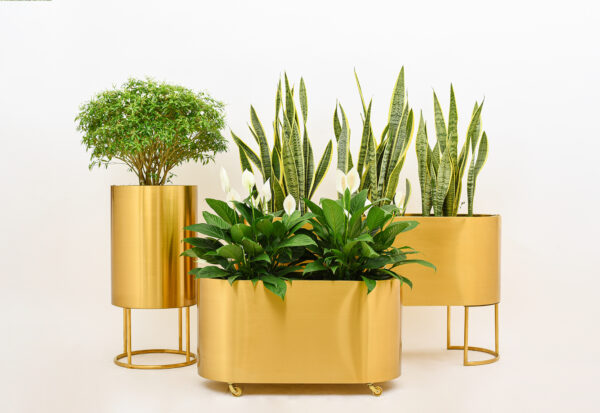 planteringslåda mässing